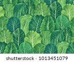 plant seamless pattern of... | Shutterstock .eps vector #1013451079