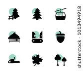 forest icons. vector collection ...