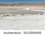 salar de chalviri  also known... | Shutterstock . vector #1013500450