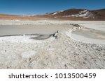 salar de chalviri  also known... | Shutterstock . vector #1013500459