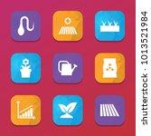 grow icons. vector collection...   Shutterstock .eps vector #1013521984