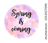 hand drawn lettering  spring... | Shutterstock .eps vector #1013527090