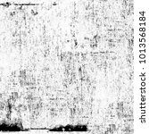 grunge texture black and white. ... | Shutterstock . vector #1013568184