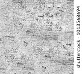 texture grunge monochrome.... | Shutterstock . vector #1013568694