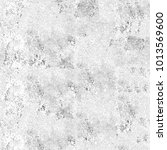 texture black and white grunge... | Shutterstock . vector #1013569600