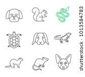Pets Linear Icons Set. Maltese...