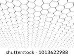 duo tone hexagon 3d background... | Shutterstock . vector #1013622988