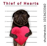 cute pug holding a heart shaped ... | Shutterstock . vector #1013623360