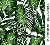 watercolor seamless pattern... | Shutterstock .eps vector #1013634856
