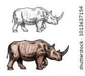 rhinoceros wild african animal... | Shutterstock .eps vector #1013637154