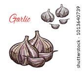 garlic seasoning spice herb...   Shutterstock .eps vector #1013640739
