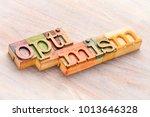 optimism word abstract in... | Shutterstock . vector #1013646328