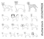 dog breeds outline icons in set ... | Shutterstock . vector #1013659828