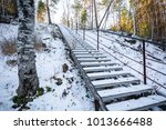 ascending ladder for ascent and ... | Shutterstock . vector #1013666488