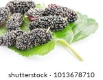 close up mulberry with green... | Shutterstock . vector #1013678710