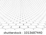 duo tone hexagon 3d background... | Shutterstock . vector #1013687440