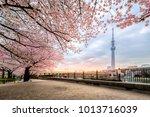 tokyo  japan   april 12  2017 ...   Shutterstock . vector #1013716039