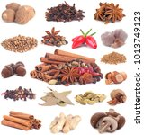natural spices on a white... | Shutterstock . vector #1013749123