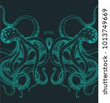 the couple octopus on dark... | Shutterstock .eps vector #1013749669