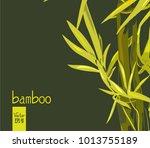 image of bamboo   Shutterstock .eps vector #1013755189