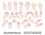 collection hand shape like... | Shutterstock .eps vector #1013762620