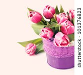 Group Of Fresh Pink Tulips In ...