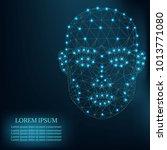 illustration of human face... | Shutterstock .eps vector #1013771080