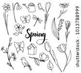 vector spring doodle set ... | Shutterstock .eps vector #1013788999