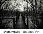 silhouette of wood bridge with... | Shutterstock . vector #1013803444