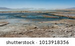 laguna y termas de polques hot... | Shutterstock . vector #1013918356