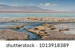 laguna y termas de polques hot... | Shutterstock . vector #1013918389