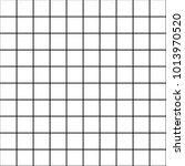 vector line pattern. geometric... | Shutterstock .eps vector #1013970520