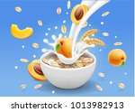 oat flakes with apricot... | Shutterstock .eps vector #1013982913