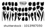 set of isolated silhouette... | Shutterstock .eps vector #1013987050