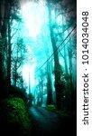 blue misty road | Shutterstock . vector #1014034048