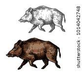 boar wild animal vector sketch... | Shutterstock .eps vector #1014042748