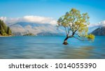 serene morning at lake wanaka... | Shutterstock . vector #1014055390
