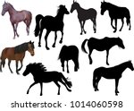 illustration with horses... | Shutterstock .eps vector #1014060598