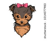 cute yorkshire terrier with... | Shutterstock .eps vector #1014077983