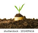 money growth. gold coins in... | Shutterstock . vector #101409616