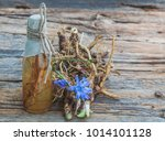 tincture of chicory roots is... | Shutterstock . vector #1014101128