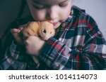 Stock photo cute girl holding a hamster children and pets 1014114073