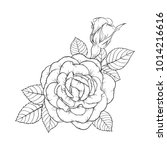 beautiful black and white rose...   Shutterstock .eps vector #1014216616