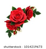 red rose flowers in corner... | Shutterstock . vector #1014219673
