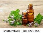 peppermint essential oil and... | Shutterstock . vector #1014223456