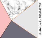 vector marble texture design... | Shutterstock .eps vector #1014242218
