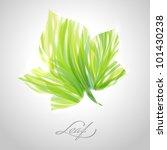 Shiny Green Striped Maple Leaf...
