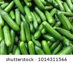 Fresh Cucumber On The Market