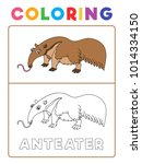 funny anteater animal coloring... | Shutterstock .eps vector #1014334150