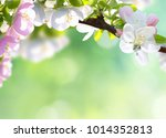 spring blossom on green blurred ... | Shutterstock . vector #1014352813